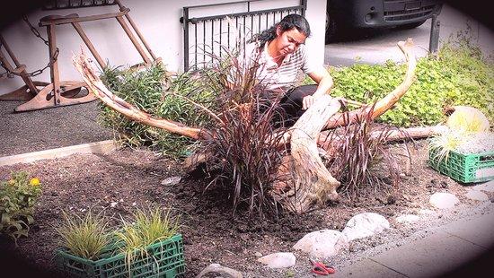 Chalet Gafri - BnB: Gabi's Gartengestaltung