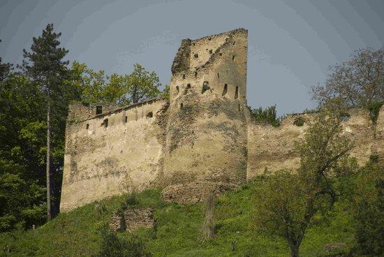 Citadel, Saschiz