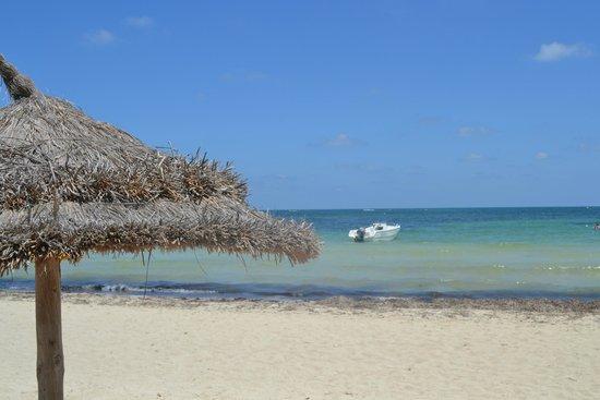 Eden Star Zarzis : vue de la plage