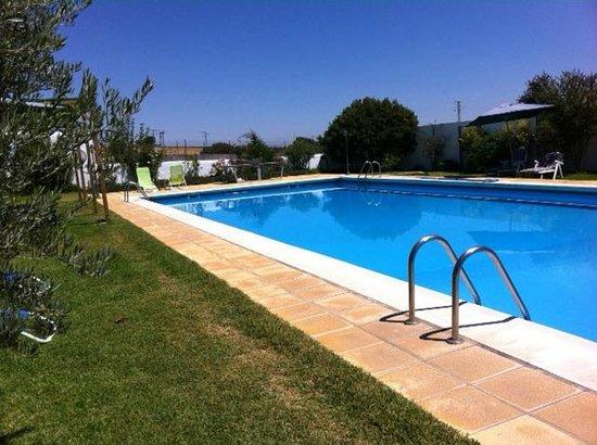 Finca El Juncal: The pool