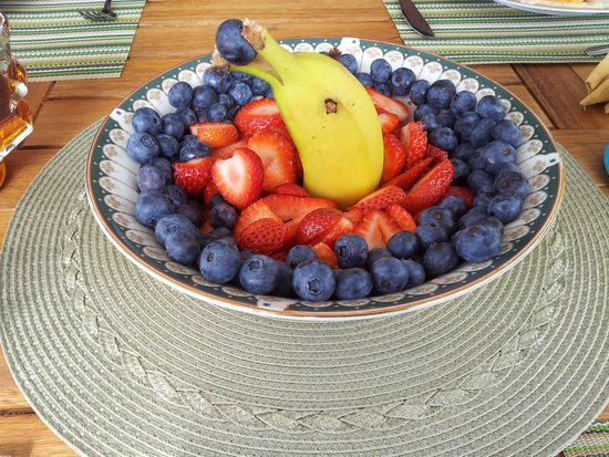 Making Waves Boatel : Dolphin swimming in the fruit salad