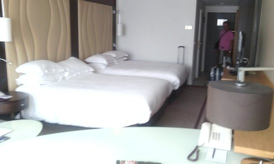 Hilton Vienna Danube Waterfront: le camere
