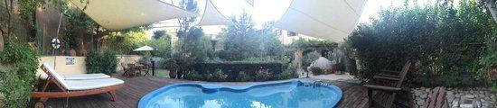 Vasilion Agrotourism: Garden and pool area