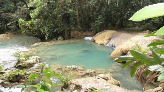 ClubHotel Riu Negril: cascades YS Falls