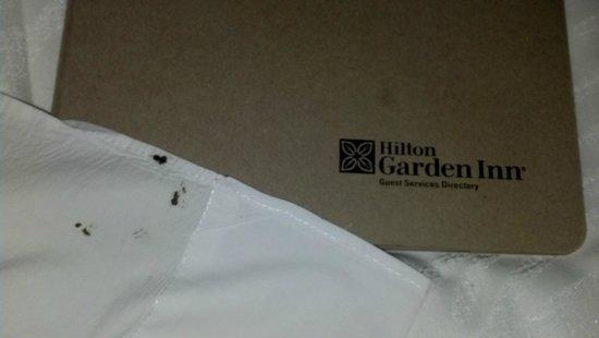 Hilton Garden Inn New York/Central Park South-Midtown West : linen spotted