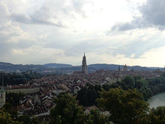 Rose Garden (Rosengarten): panorama