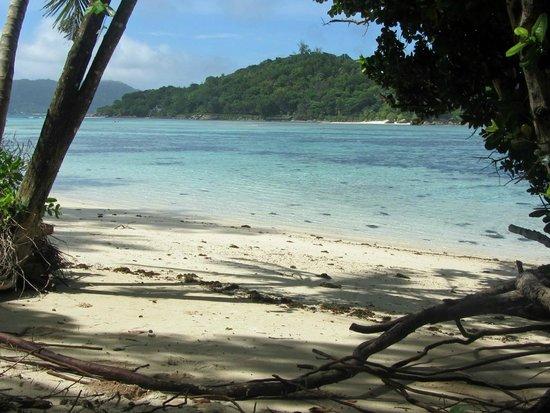 New Emerald Cove : Spiaggia a sinistra del pontile