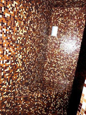 Dharma Hotel & Luxury Suites: Dusch & Sauna