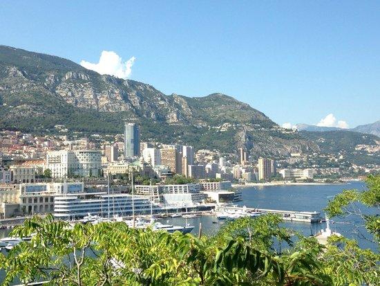 Exotic Garden (Jardin Exotique) : Вид на Монте-Карло
