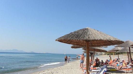 Sovereign Beach Hotel: Lettini e ombrelloni per niente arrugginiti e arretrati (come veniva sottolineato altrove)