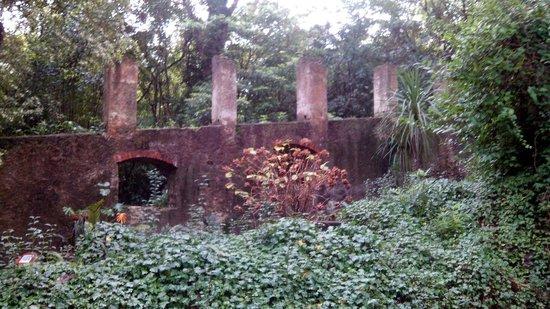 Arboretum Lussich : Mañana del domingo