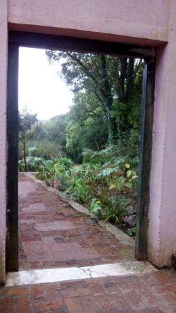 Arboretum Lussich : ¿Qué hay detrás?