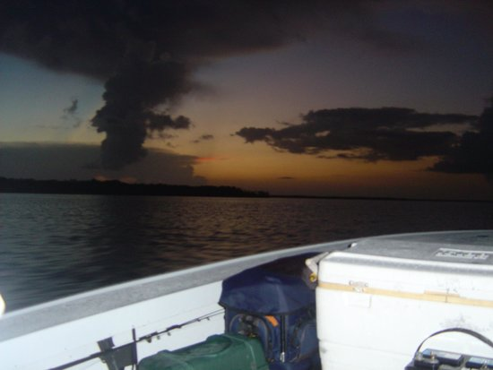 Southern Viking Charters: Southeast of Goodland 10,000 Islands July 2014