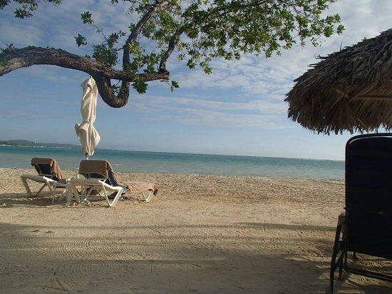 Sandals Whitehouse European Village and Spa: Fabulous beach
