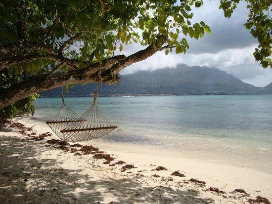 Cerf Island Resort: Lieblingsplatz: Strandabschnitt des Resorts mit Hängematte ;)