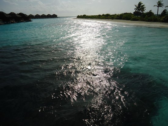 Anantara Veli Maldives Resort : Late afternoon view