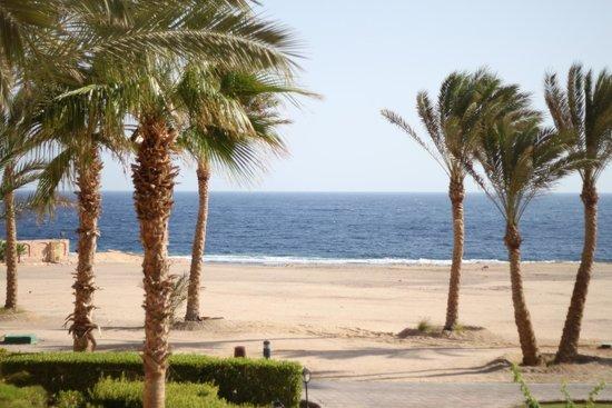 Steigenberger Coraya Beach: View from Room 1911