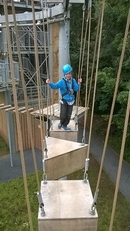 SKYTrek: Low ropes course