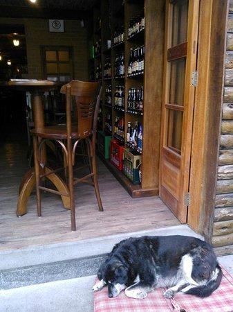Fraulein Bierhaus: Na entrada da cervejaria, o mascote, já velhinho, passa o dia dormindo ....