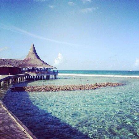 Anantara Dhigu Maldives Resort: Beauty all around
