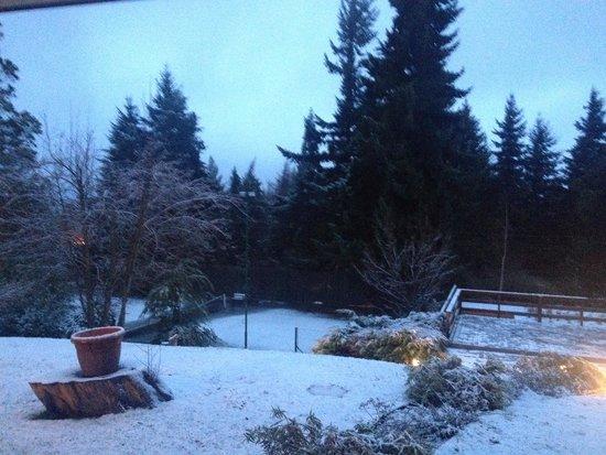 Aldea Andina: Vista nevada