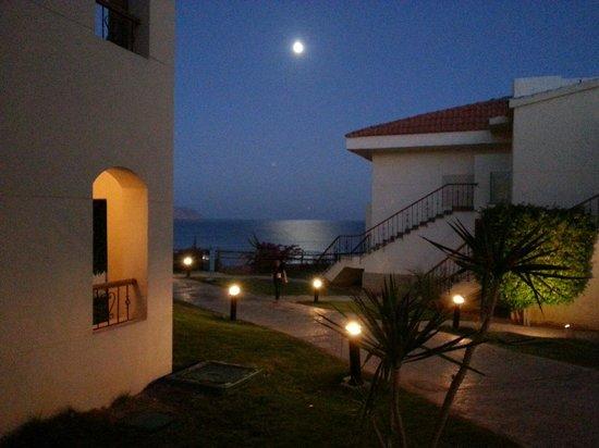 Island View Resort : Amazing