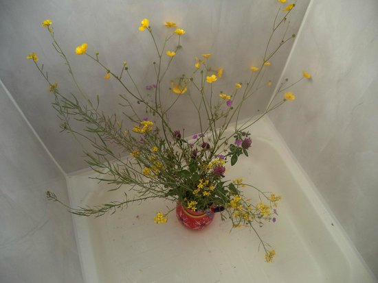 Larry's Barge - Day Tours: Georgina gave us fresh flowers most days on our 4 day trip