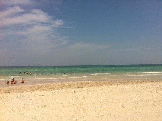 Al Jazira Beach & Spa: la plage