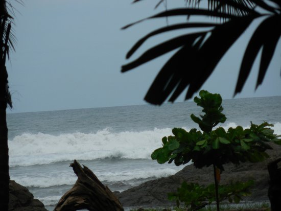 Roca Verde: Perfect Waves