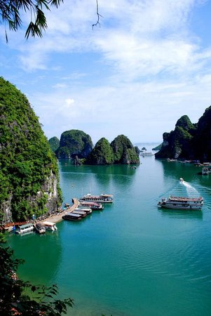 Asia Tour Advisor - Private Day Tours: Halong Bay