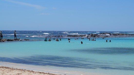 Baby Beach: Mergulho
