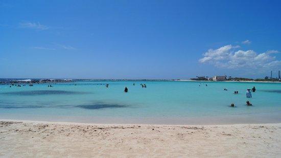 Baby Beach: Vista impressionante