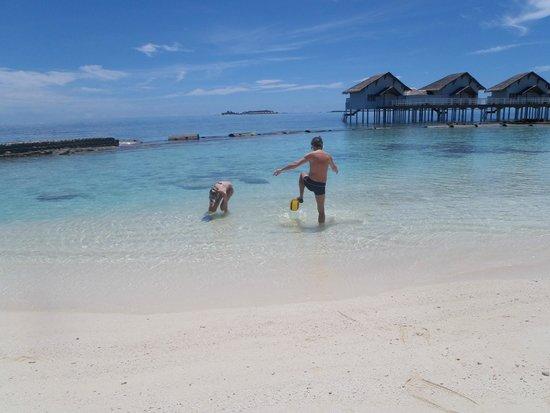 Centara Grand Island Resort & Spa Maldives: Snorkelling in front of our villa