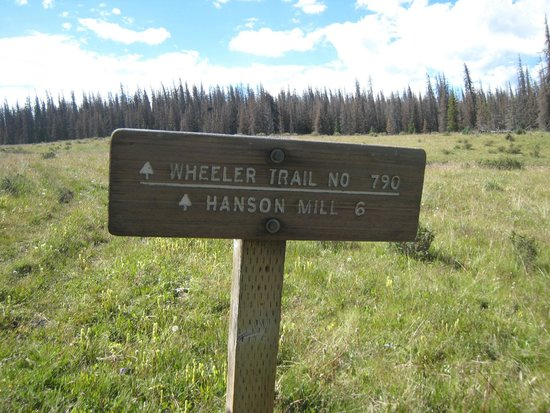 Wheeler Geologic Area: Road and Trail junction sign about 1 mile out from the Geologic Area