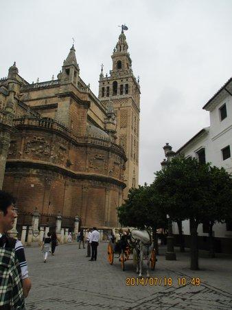 Cathédrale Notre-Dame du Siège de Séville : 外観