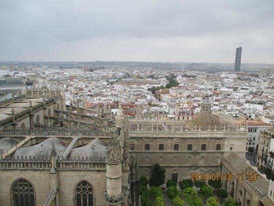 Catedral de Sevilla: 屋上