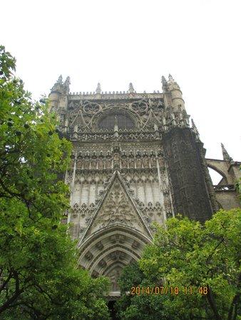 Catedral de Sevilla: 外観2