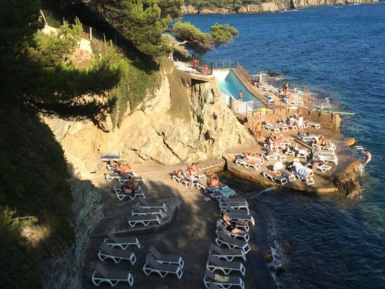 Hotel Le Provencal : the famous pool