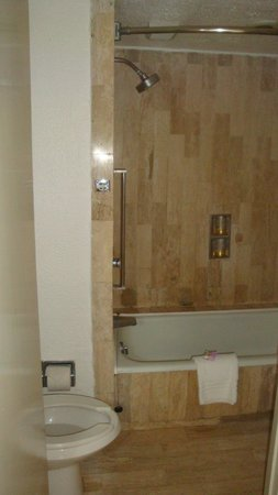 Gran Plaza Hotel Acapulco: Banheiro