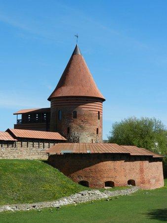 Kaunas Castle: замок