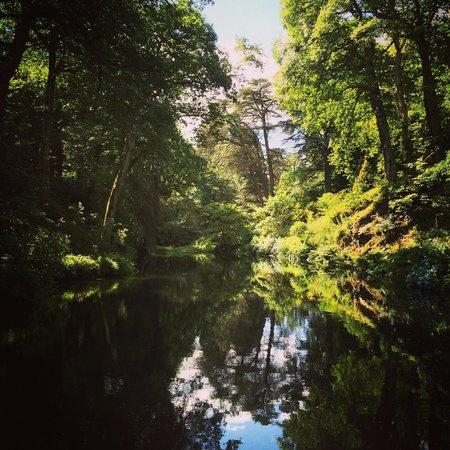 Bodnant Garden: Waterfall Lake