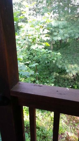 Laurel Mountain Cabins: Side Porch view