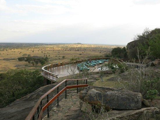 Lobo Wildlife Lodge: Piscine