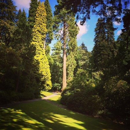 Bodnant Garden: Immaculate gardens