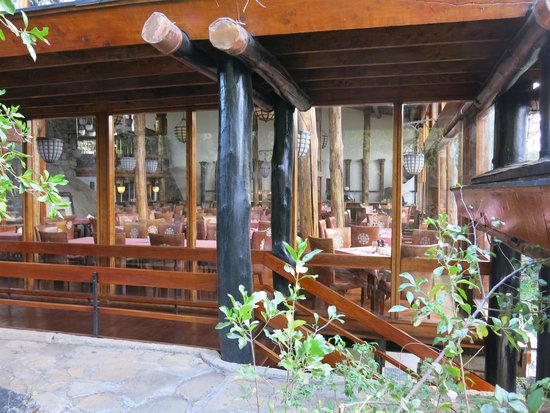 Lobo Wildlife Lodge: Restaurant