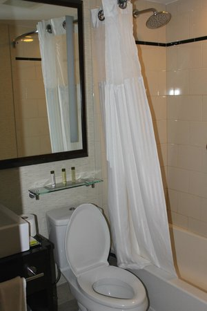 DoubleTree by Hilton Hotel New York City - Financial District: WC