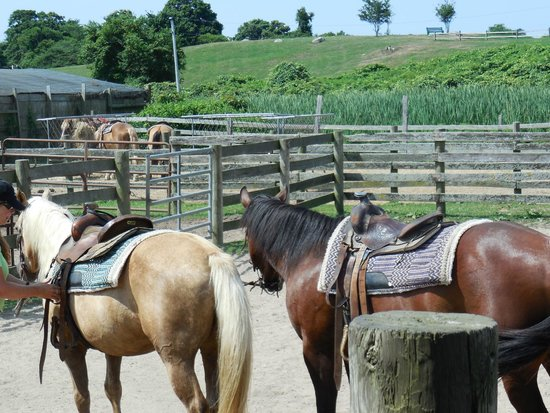 Montauk Blue Hotel: Deep Hollow Ranch Horseback riding includes beach, short drive from hotel