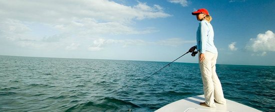 Sting Rea Private Charters : Shallow water sight fishing in the Keys for tarpon, bonefish, permit, sharks and barracuda