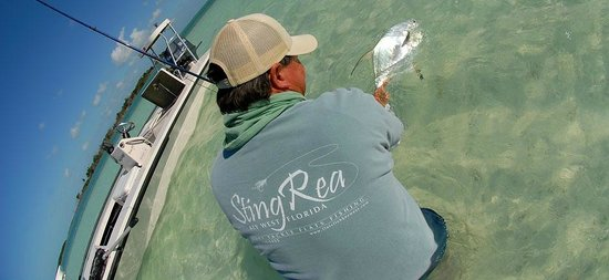 Sting Rea Private Charters
