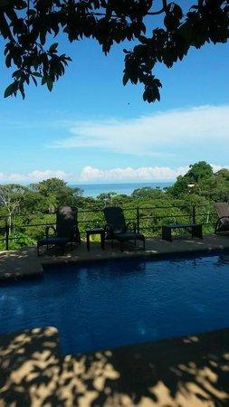 Alma de Ojochal: Amazing view from pool